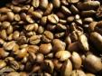 Kaffee Bohnen Espresso Tassen