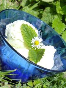 Sauerrahm Eis Rezept