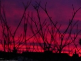 Sonnenrot im Winter