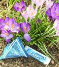 Wohlfühlbox MedPex Frühling März 2015