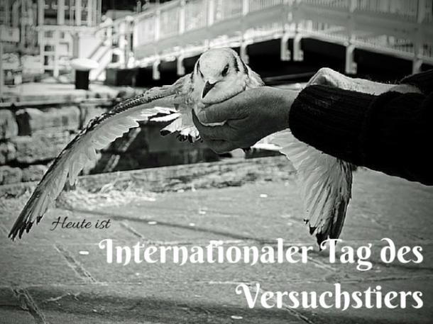 Internationaler Tag des Versuchstiers
