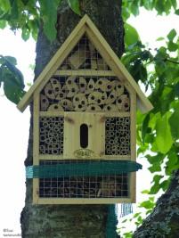 Insektenhotel mit Bewohner