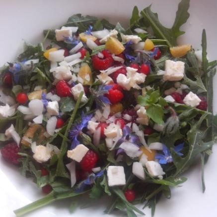 #WildgärtnerGenuss Wildkräutersalat mit Essbaren Blüten von Neudorff