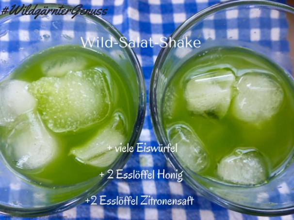 #WildgärtnerGenuss Wildsalat Kräuter als Shake