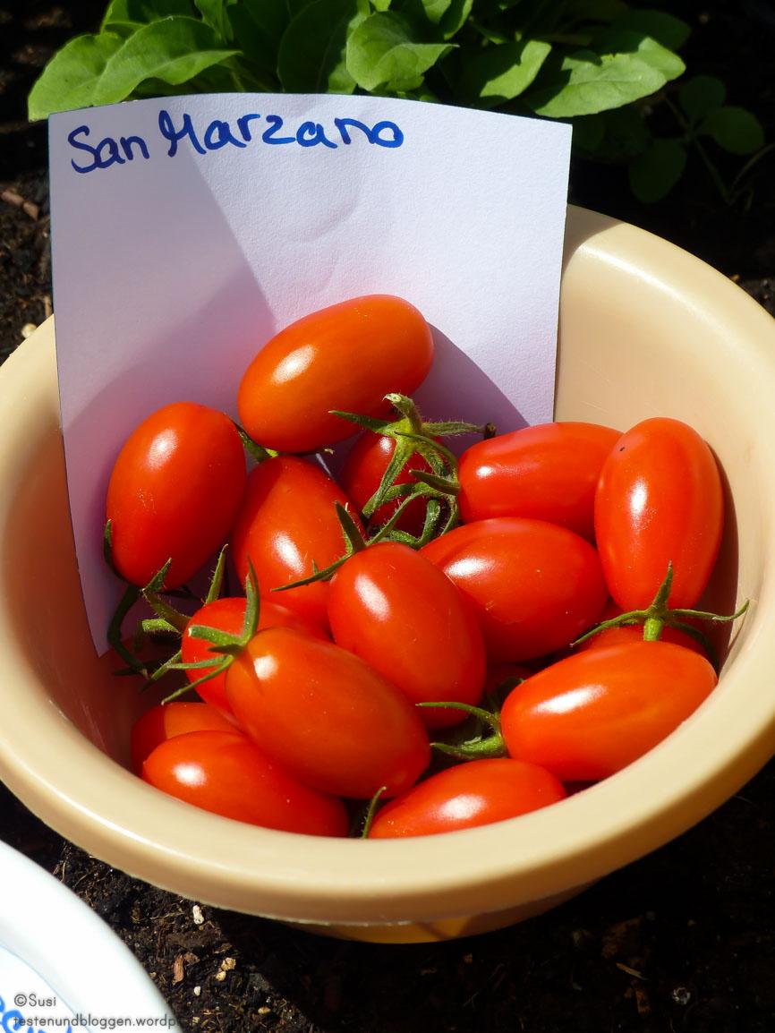 die 3 tomatensorten limetto ravello und rubin pearl. Black Bedroom Furniture Sets. Home Design Ideas