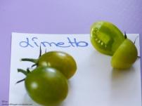 Tomaten Limetto San Marzano Rubin Pearl Ravello