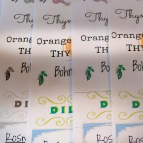 Avery Zweckform Etiketten drucken unddesignen