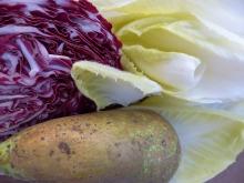 Winter Salat Chicoree Radicchio Birne