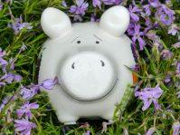 Sparschwein Lausbua