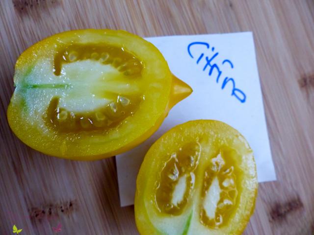 Tomatensorten Citrina