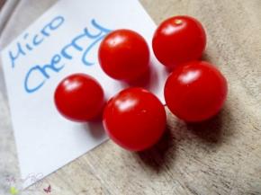 Tomatensorten: Micro Cherry