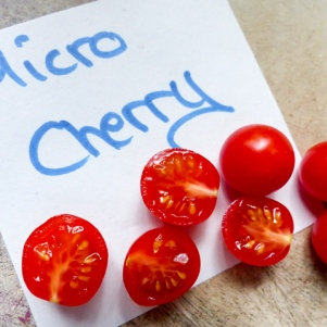 Tomatensorten Micro Cherry