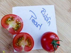 Tomatensorten Rubin Pearl