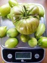 Grünes Tomaten Chutney Rezept