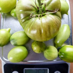 [Rezept] Grünes TomatenChutney