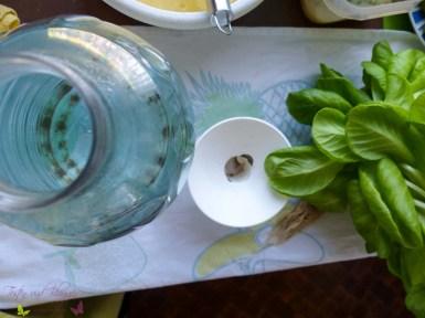BottleCrop Salat aus der Flasche