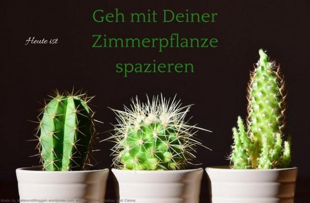 Heute ist: Geh mit Deiner Zimmerpflanze spazieren Tag