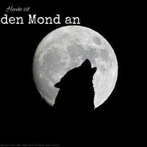 Heute ist: Heul den Mond anTag