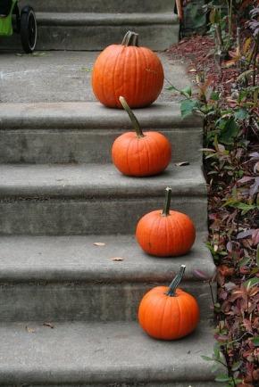 Herbstliches Styling für die eigenen vierWände