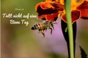 Heute ist: Tritt nicht auf eine BieneTag