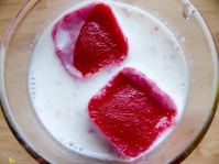 Die CLIP & CLOSE Eiswürfelform von emsa