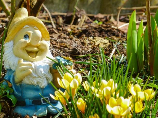 Bald kommt auch wieder der Frühling