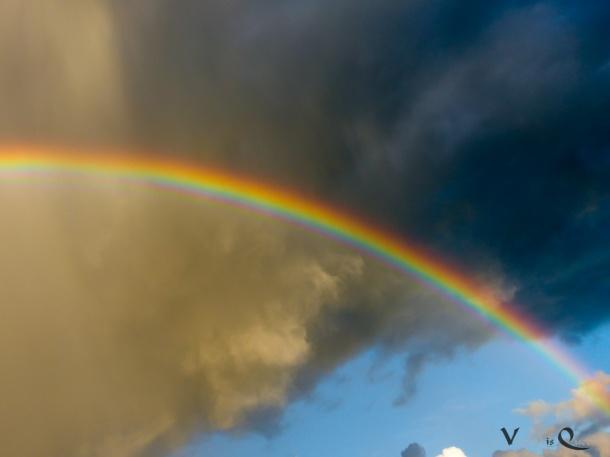 Sonne + Regen = Regenbogen