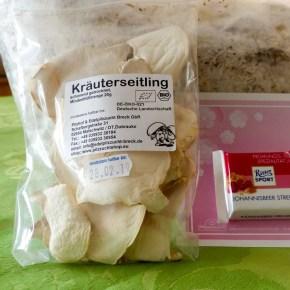Pilze selber züchten mitPilzmännchen