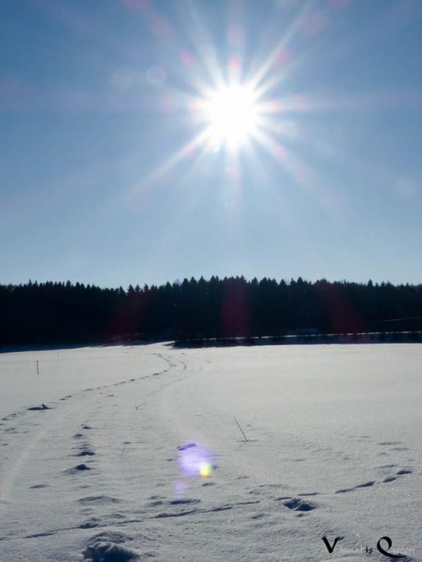 Sonnenstrahlen Winter Schnee